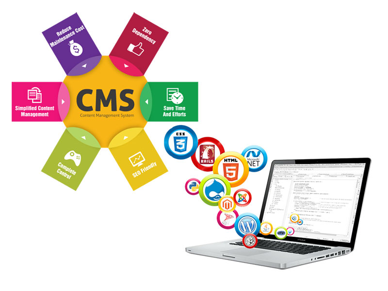 Custom CMS Web Design Budget.